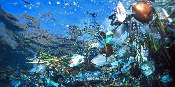 Plastikstrudel im Meer